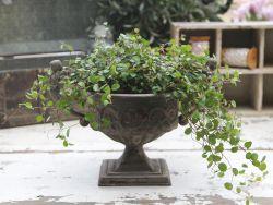 Nádoba na květiny, zdroj: www.bellarose.cz
